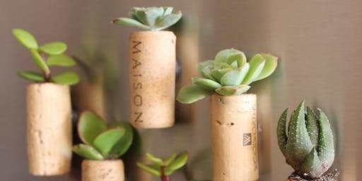 Cork Succulent Workshop