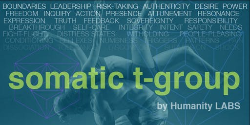 Somatic T-Group - Full Day Intensive Leadership Training - SF Bay Area