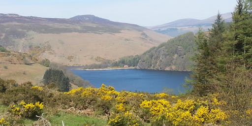 Camino Preparation Walk- Lough Dan, Wicklow