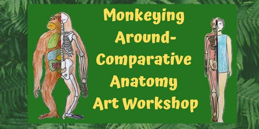 Monkeying Around- Comparative Anatomy Art Workshop age 7+