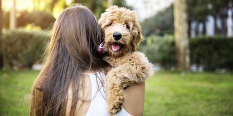 PUPPY MANNERS (LEVEL 1) SUNDAY, Shanganagh Park, Beside the dog park tickets
