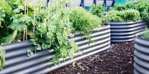 How to make a Wicking Bed Veggie Patch 2019