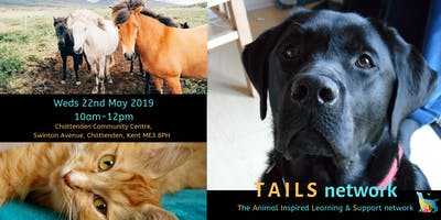 TAILS network 22nd May