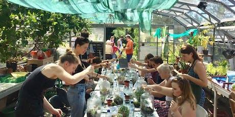 Terrarium Workshop with Jar & Fern: Demijohns tickets