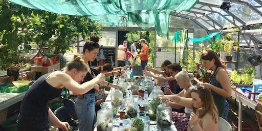 Terrarium Workshop with Jar & Fern: Demijohns