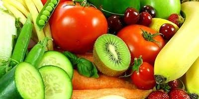 Enzyme Nutrition - Pamela Sue LE Lansing