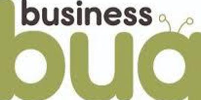 Business Bug Speaking Engagement SME Skills Discovery Session