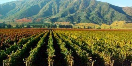 Wine Class - Chilean Wine tickets
