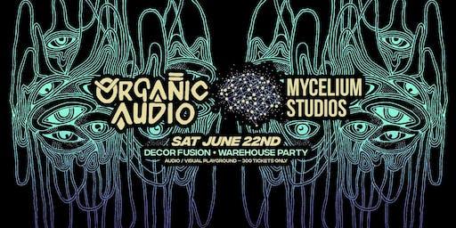 Organic Audio & Mycelium - Decor Fusion Warehouse Party