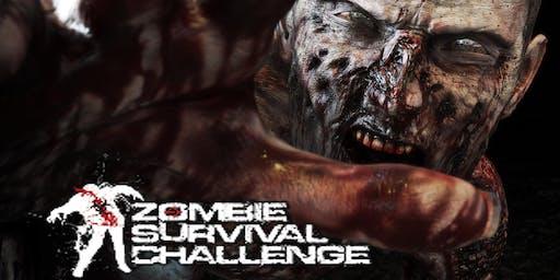 Zombie Survival Challenge