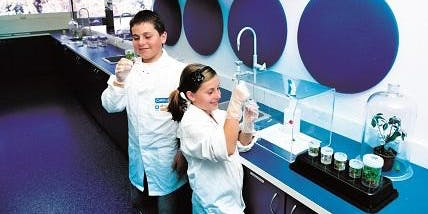 Scitech PL: Open Lab at Honeywood Primary School