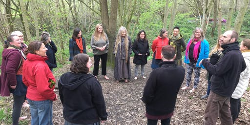 Midsummer Celebration  -  Nature Connection and Singing in the Wild Woods