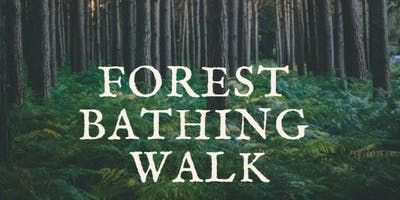 Nature and Forest Therapy Walk