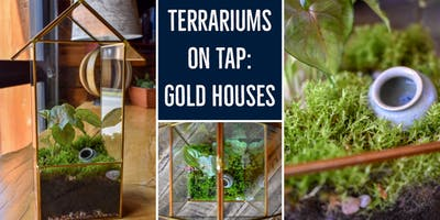 Terrariums on Tap - Gold Houses