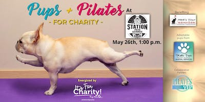 Pups & Pilates-For Charity at The Station Patio Icehouse