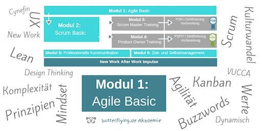 MODUL 1:  Agile Basic - Zusammenhänge verstehen | butterflying.de Akademie