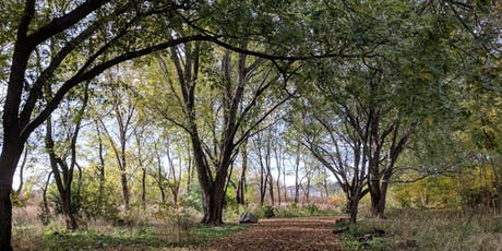 Downsview Park Jr. Forest Explorers: Garden Adventures tickets