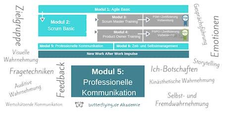 MODUL 5: Professionelle Kommunikation | butterflying.de Akademie Tickets