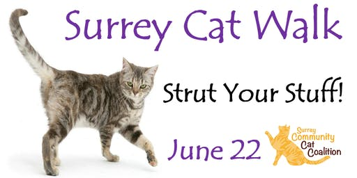 Surrey Cat Walk: Strut Your Stuff!