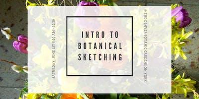 Intro to Botanic Illustrations