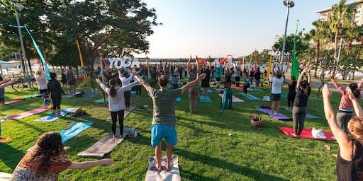 Yoga Day Festival 2019