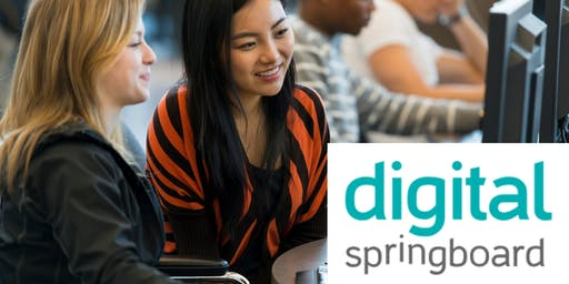 Digital Springboard - Skills for Starting Your own Business