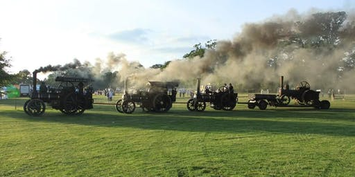 National Steam Rally, Stradbally