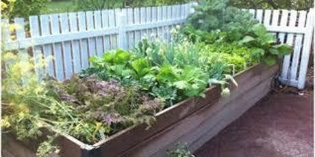 Raised Bed Vegetable and Herb Gardening tickets