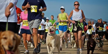 Doggy Fun Run tickets