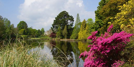 Waterlily Festival Photography Workshops