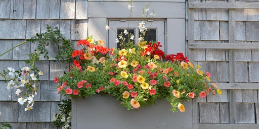 Nantucket Window Box Tour and Demo with Fabrizia Lu Macchiavelli