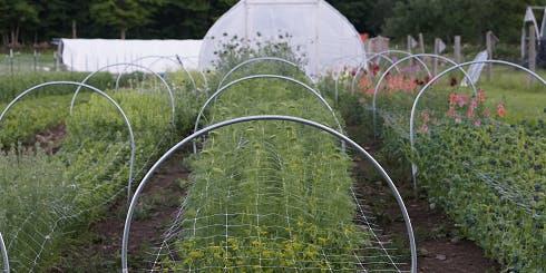 Garden Infrastructure, Applying Farm Systems to the Home Garden