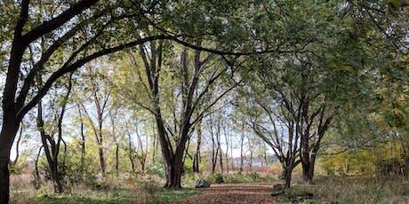 Downsview Park's A Walk in the Park: Wonderful World of Birds  tickets