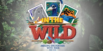 In The Wild: Alley VBS 2019 (Vacation Bible School)