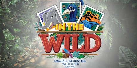 In The Wild: Alley VBS 2019 (Vacation Bible School)  tickets