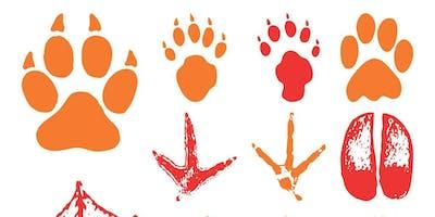 Animal Tracking 101