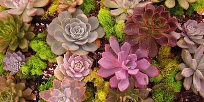 The Art and Science of Succulents