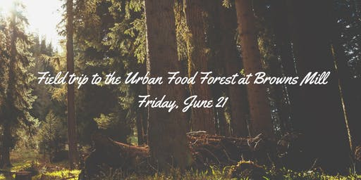 Field trip to the Urban Food Forest at Browns Mill