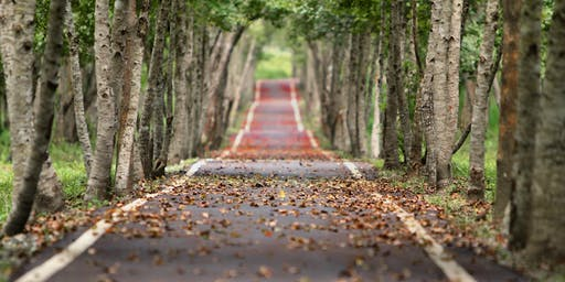 Pathways | Called and Gifted by God for Others
