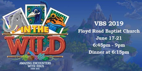 2019 VBS In the Wild tickets