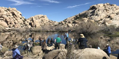 Music Medicine Professional Training Retreat - Joshua Tree, CA