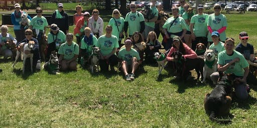 Sneakers & Paws 2019 - Family Fun Run/Walk for a Cause