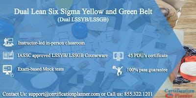 Dual Lean Six Sigma Yellow Belt and Green Belt 4-Days Classroom in Las Vegas