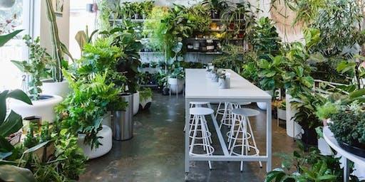 Not Yet Perfect x Bar Botanik - Pottery Planter Making Workshop
