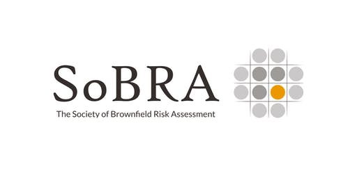SoBRA/REMSOC Early Careers Risk Assessment Workshop (2019)