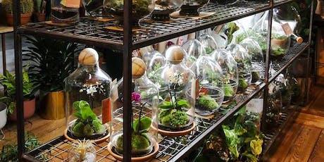 Atelier terrarium billets