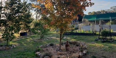 Sustainable living farm tour