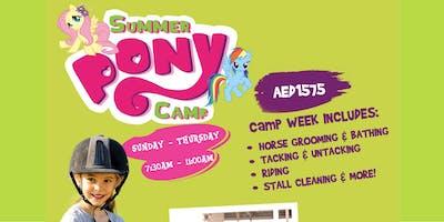 Summer Pony Camp at Al Habtoor Riding School