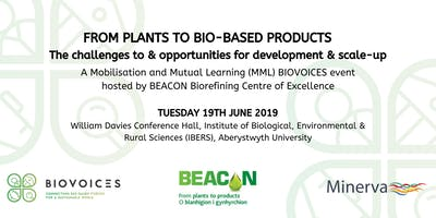 From plants to bio-based products - The challenges to & opportunities for development & scale-up