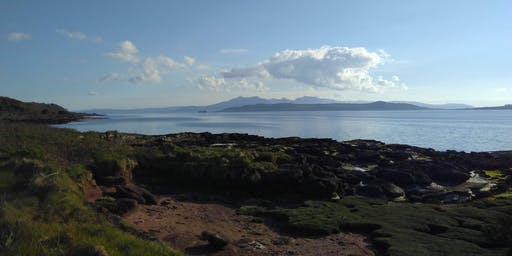 Isle of Cumbrae - Wild Food and Forage - July